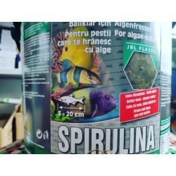 Spirulina 5.5л