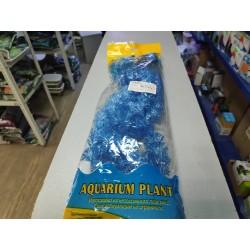Кабомба синяя